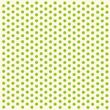 Green polka dots paper Stock Images