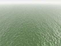 Green polluted water Royalty Free Stock Images