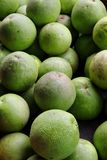 Green pomelo Royalty Free Stock Photography
