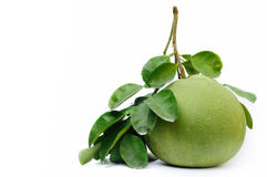 Pomelo Stock Photography