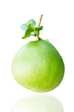 Green Pomelo Fruit Royalty Free Stock Images