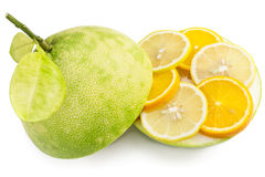 Green pomelo fruit cut with segments of lemon and orange Royalty Free Stock Photos