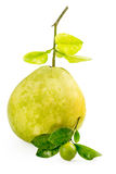 Green pomelo fruit with small lime on white Background Stock Images