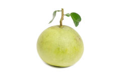 Green pomelos Stock Photography