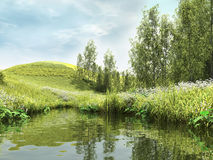 Green pond by the forest Royalty Free Stock Photo