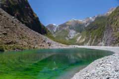 Green pond near Fox Glacier, New Zealand Stock Images