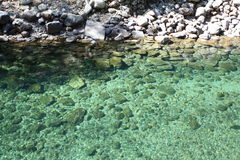 Green Pond with Rocks royalty free stock photography
