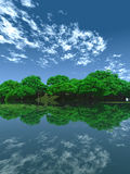 Green_Pond_V. Green trees on  coast - 3d scene Stock Photography
