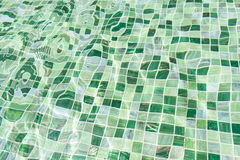 Green Pool Background Royalty Free Stock Images