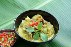 Green pork Curry Stock Photography