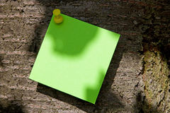 Green Post-It on a Tree Stock Photos