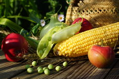 Green pot, corn, onions, apple  and straw hat. Royalty Free Stock Image