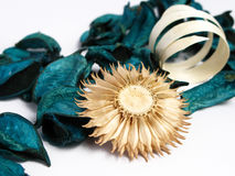 Green Potpourri Stock Photo