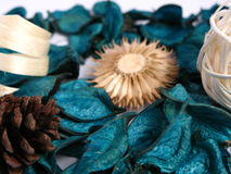 Green Potpourri Stock Photography