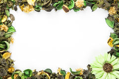 Green Potpourri border with copy space Stock Photography
