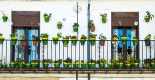 Green pots. Balcony with green  pots in ubeda Stock Images