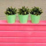 Green pots Stock Photos