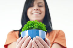 Green potted. Beautiful woman holding a green potted plant held in a pair of protective hands Royalty Free Stock Photo