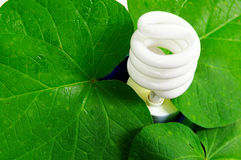 Green power Royalty Free Stock Photo