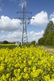 Green power - Colza field and transmission tower. A yellow blossoming colza field, a transmission tower and power lines as symbol for green alternative power royalty free stock photos