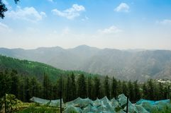 Free Green Protective Tents Of Apple Orchards On Shimla`s Hilly Slope Stock Photo - 119646320