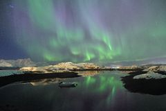 Green and pruple northern lights in Norway Stock Image