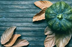 Green pumpkin and autumn leaves moody toned photo. Golden autumn harvest banner template. Dry leaf and squash ornament on wooden table. Rustic flat lay with Stock Photography