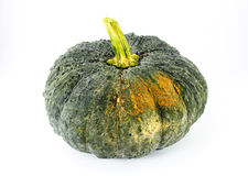 Green pumpkin fruit. On white background Royalty Free Stock Photo