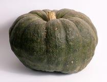 Green pumpkin for Halloween Stock Photos