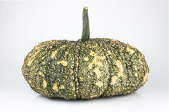 Green pumpkin Stock Photos