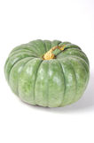 Green pumpkin isolated on white background Stock Photos