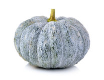 Green pumpkin isolated on the white background Royalty Free Stock Image