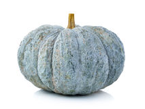 Green pumpkin isolated on  white background Royalty Free Stock Photo