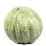 Green pumpkin isolated on white. Square image format Stock Images