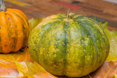 Green pumpkin and leaves on a wooden table Stock Photography