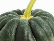 Green pumpkin, little detail Royalty Free Stock Photos