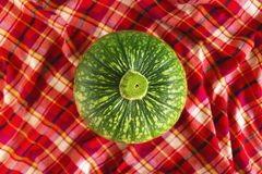 Green pumpkin on a red checkered towel, top view. Autumn still life Stock Photos