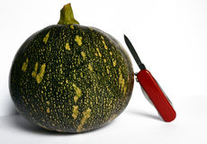 Green Pumpkin. A green pumpkin with a red knife Stock Photos