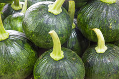 Green pumpkin small Stock Images