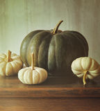 Green pumpkin and small white gourds Royalty Free Stock Photography