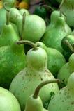 Green pumpkins Stock Photos