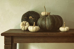 Green pumpkins and small gourds on table Royalty Free Stock Image