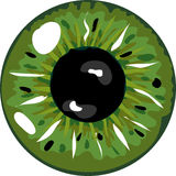 Green pupil Stock Photo