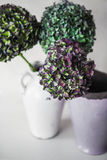 Green and purple hydrangea flowers on a gray background. Green and purple hydrangea flowers in vases on a gray background Royalty Free Stock Photo