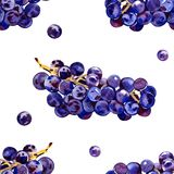 Green, purple, tasty, healthy grapes. Southern, ripe, fresh, wine berry. A bunch of delicious, juicy grapes. Decorative. Green, purple, tasty, healthy grapes vector illustration