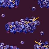 Green, purple, tasty, healthy grapes. Southern, ripe, fresh, wine berry. A bunch of delicious, juicy grapes. Decorative. Green, purple, tasty, healthy grapes stock illustration