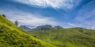 Green Pyrenees Royalty Free Stock Photos
