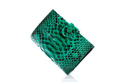Green Python Leather wallet. Isolated on white backrgound Stock Photos