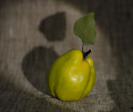 Green quince Stock Photo