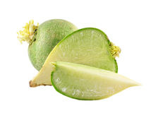Green radish Stock Image